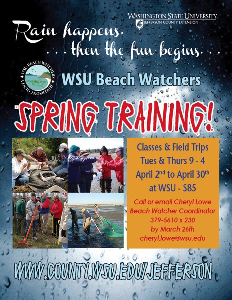 Beach Watcher Training 2013Poster revised