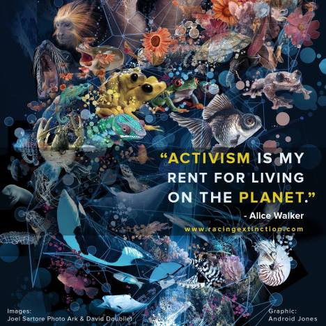 "From ""Racing Extinction"""