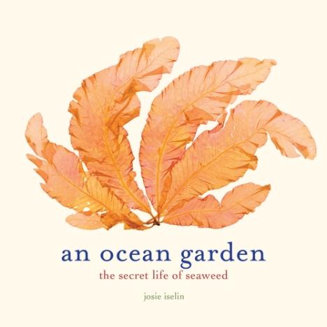 Ocean+Garden